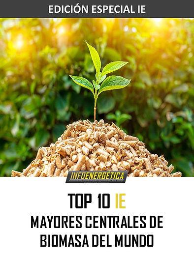 MAYORES CENTRALES BIOMASA DEL MUNDO.jpg