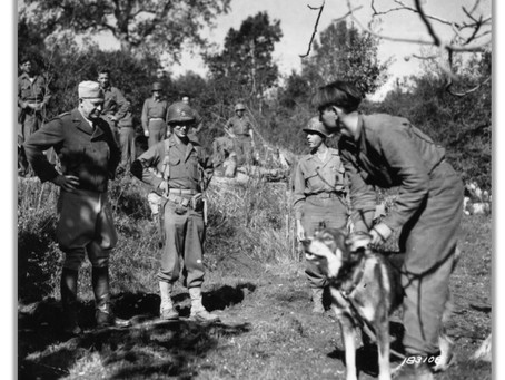 This Day in History: Chips, the war dog