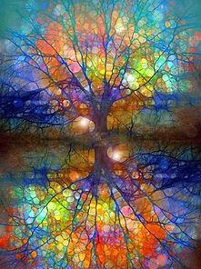 arbre solenn.jpg