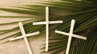 Fr David's Sermon for Palm Sunday