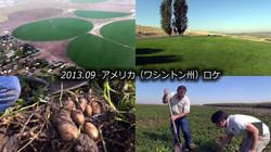 ポテト生産地&加工工場の撮影