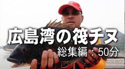 広島湾の筏チヌ 【総集編】