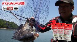 釣果倍増⁈ チヌ釣り名手が明かすクリップシンカーの裏技