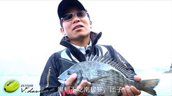KIZAKURA 全游动 恶劣环境下的黑鲷中文版