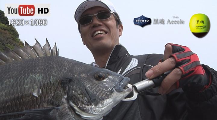 深い藻場のチヌ/川添晃司 黒魂Accele(アクセル)000