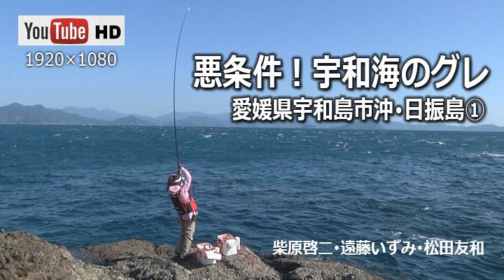 日振島 ① 悪条件!宇和海のグレ