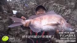 KIZAKURA 水平浮漂钓大真鲷,黑鲷中文版