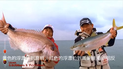 KIZAKURA两段浮漂钓真鲷和黄条狮 中文版