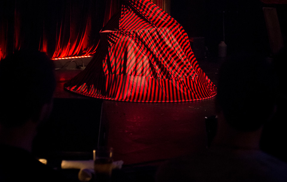 Carousel Hoop Skirt