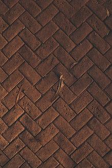 brown-brick-pavement-3024453.jpg