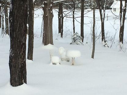 Salon de neige