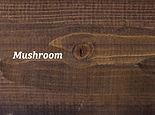 mushroom res.jpg