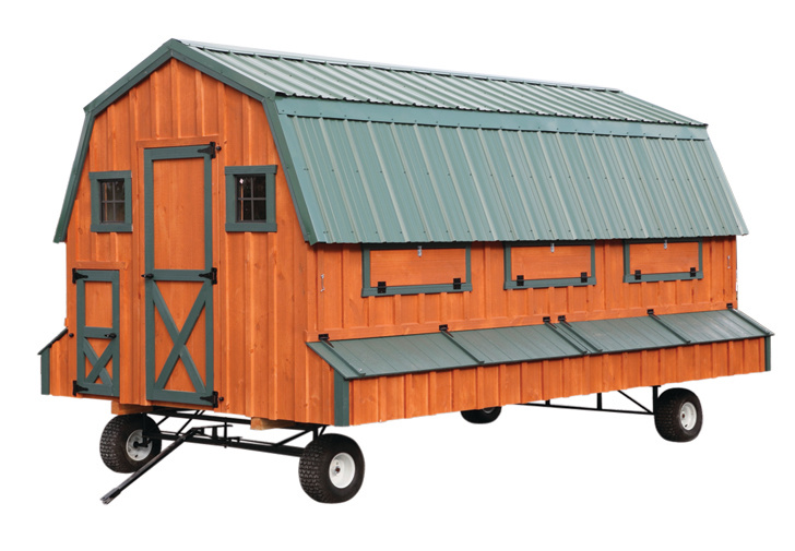 Barn Style Coop