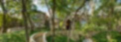 crop strip.jpg