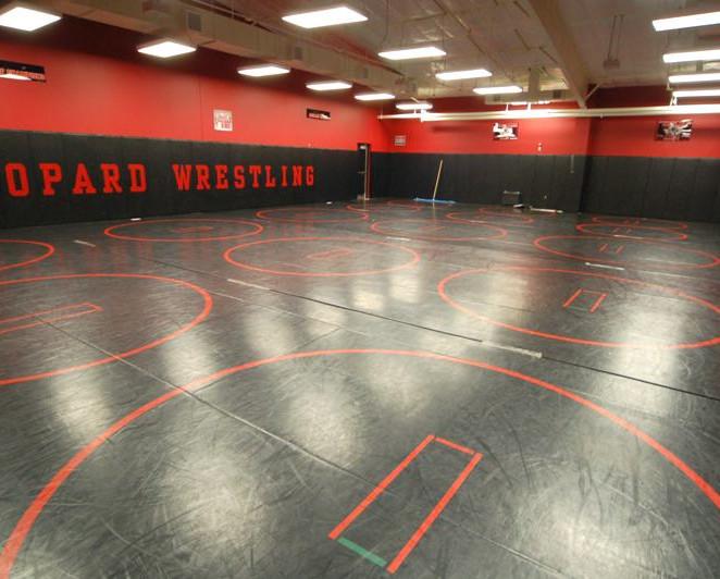 wrestling area.JPG
