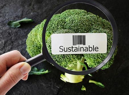 La sostenibilidad y el sector Retail