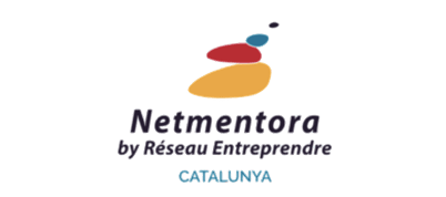 NETMENTORA.png