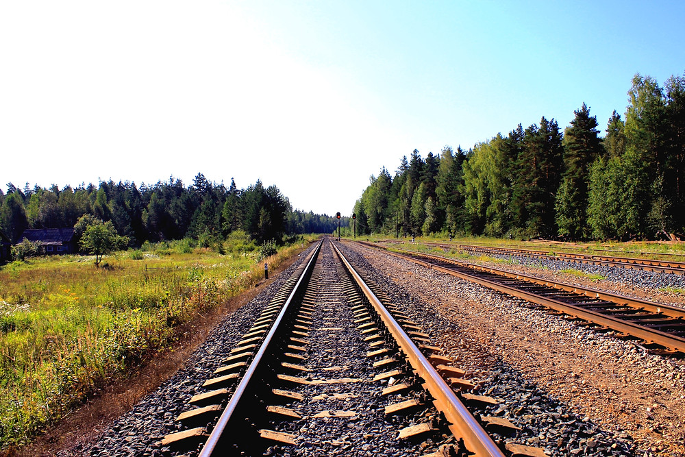 Shows a view from the perspective of railroad tracks going through a bright sunny forest, as part of a blog post for PolarPanel, solar refrigeration for the coldchain.
