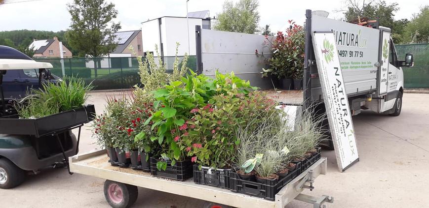 Livraison et vente de plantes