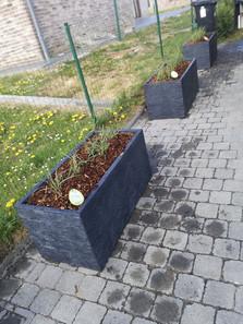 Aménagement de pots