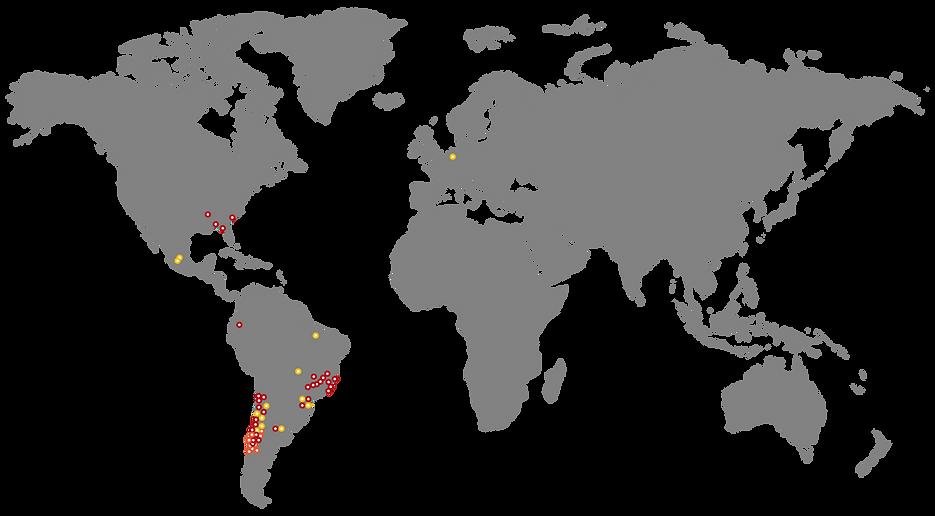 World Map Woodtech