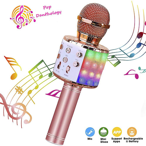 Karaoke Wireless Microphone