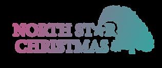 North Star Logo AvInd.png