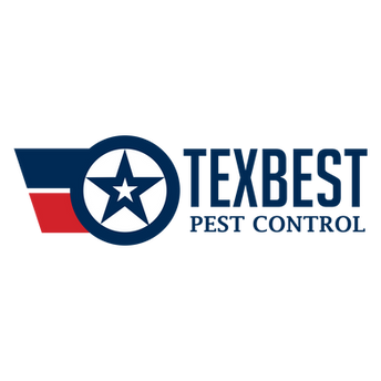 texbest.png