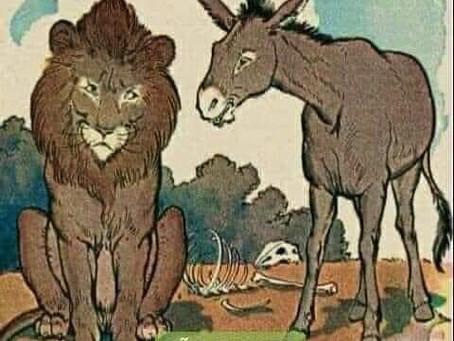 Não se discute com burros!