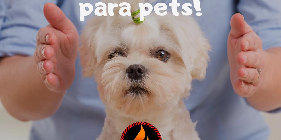 Projeto Cuidar - Terapia pets!
