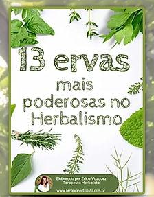 13 ervas mais poderosas do Herbalismo.jp