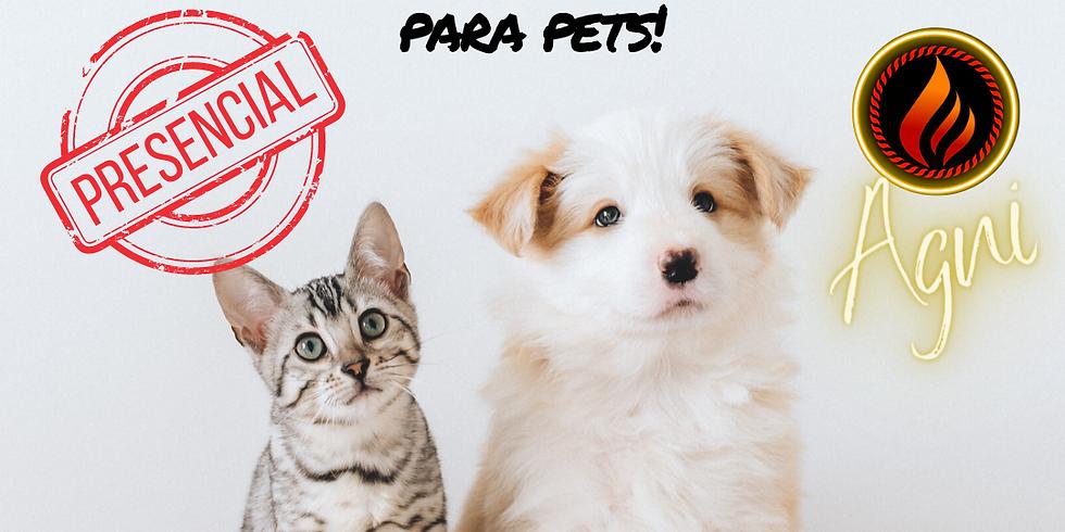Terapia holistica para pets