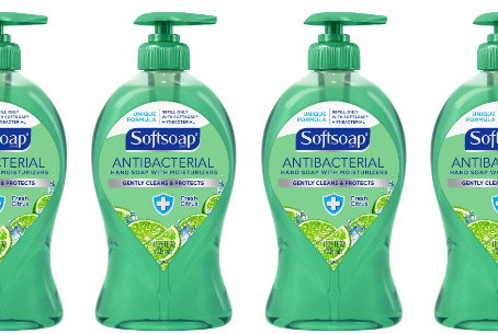 Pay $0.50 for Soft Soap at Dollar Tree.