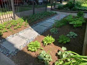 Modern Shade Garden