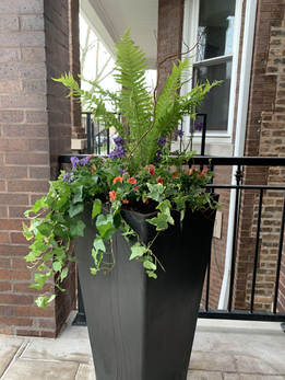 Shade Spring Planter