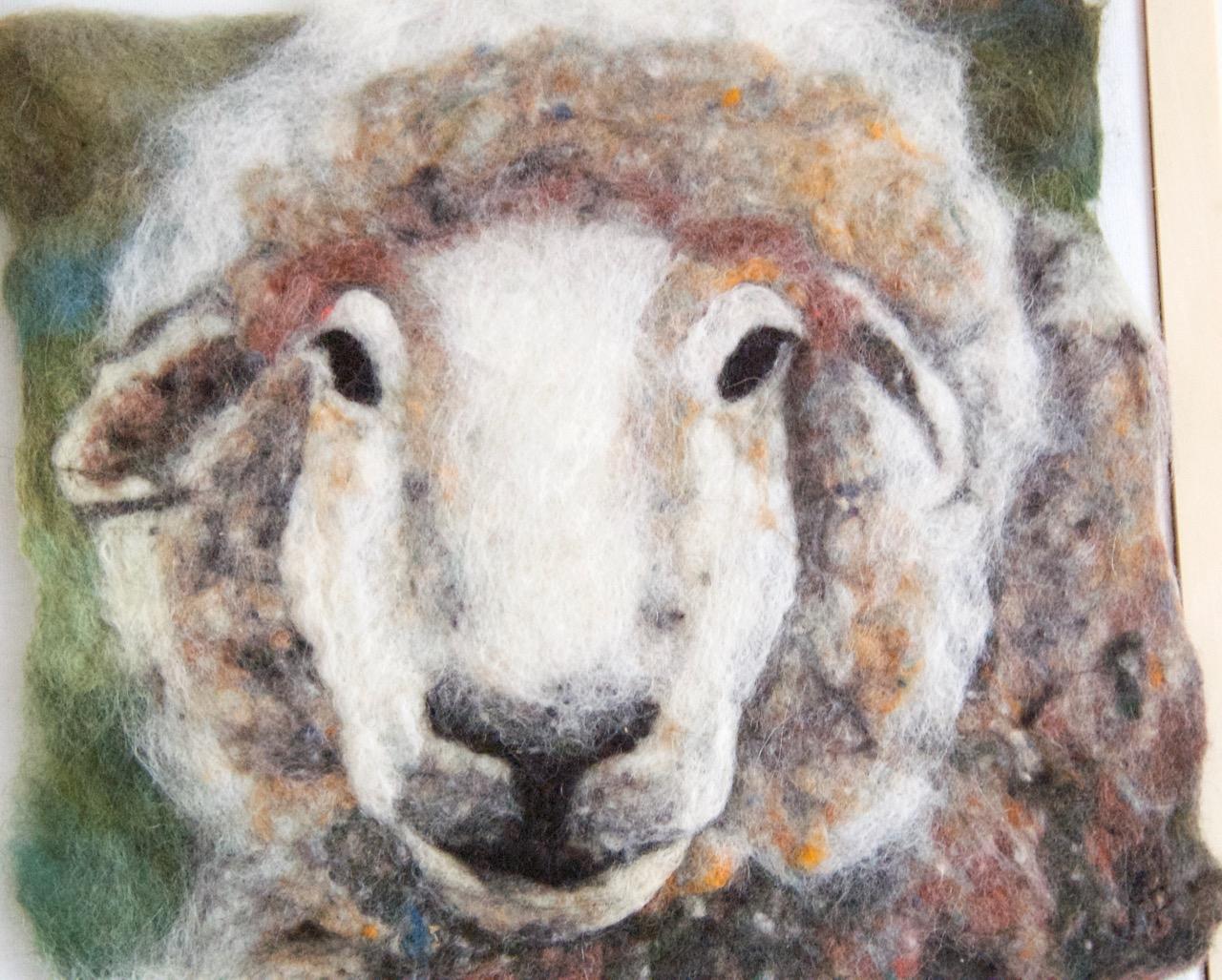 Sheep 2016