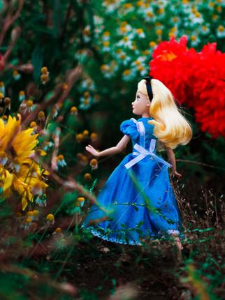 How do we get to Wonderland?
