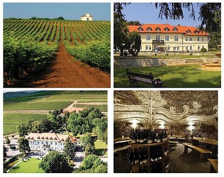 degenfeld_winery.jpg