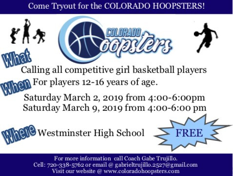 Come tryout for the HOOPSTERS