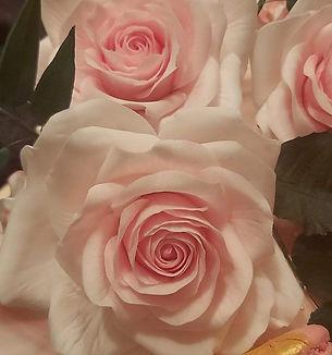 Finished roses.jpg