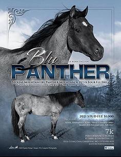 Blu Panther Flyer.jpg