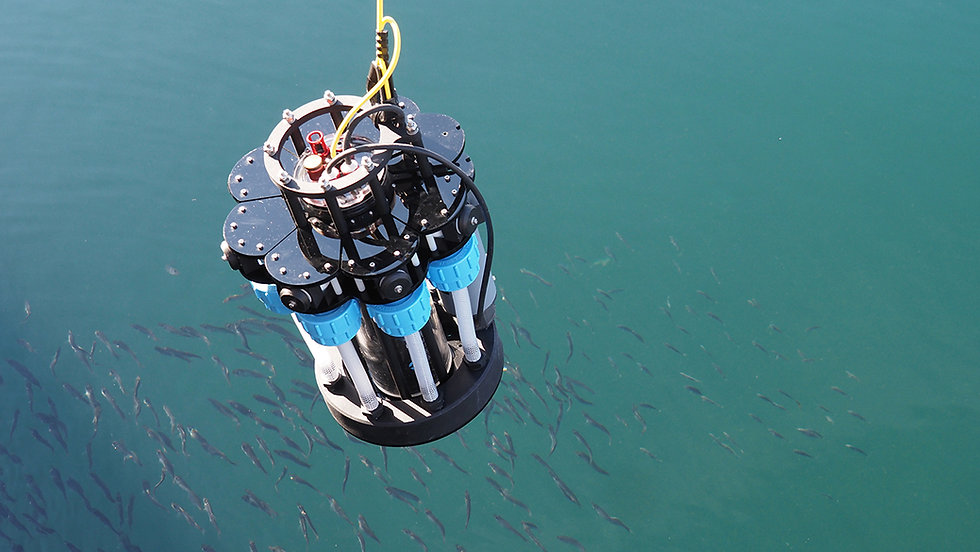 Image of microplastics depth profiling instrument being lowered into the water