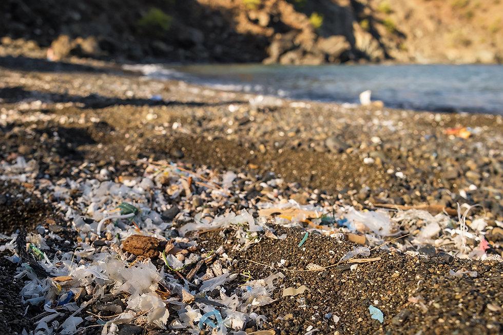 Microplastics Pollution 3.jpg