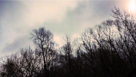 LoudSilenceOfNature-Winter