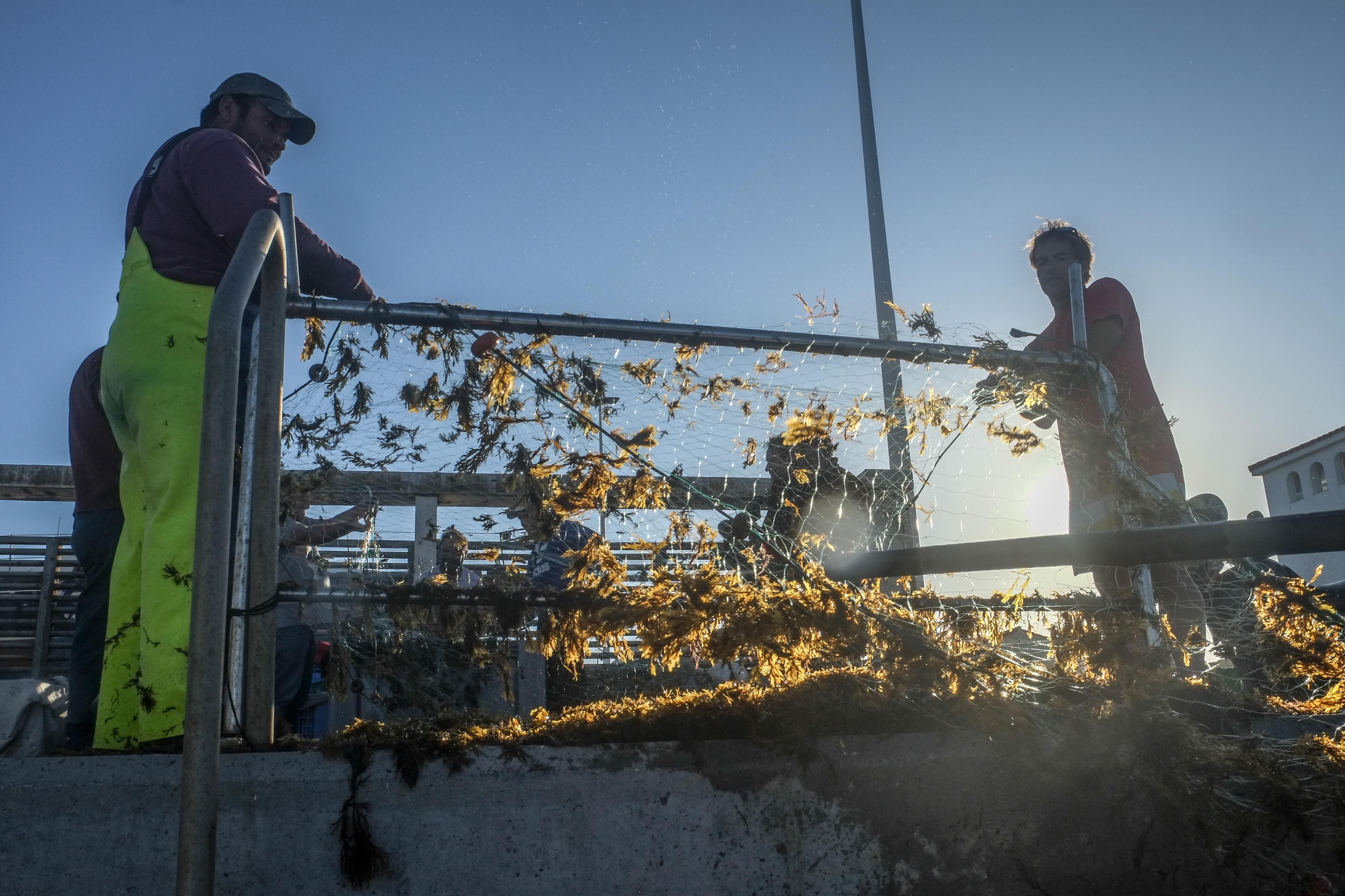 Fischer entfernen Algen aus ihren Netzen