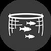aquaculture-fish-farming-method_edited.p