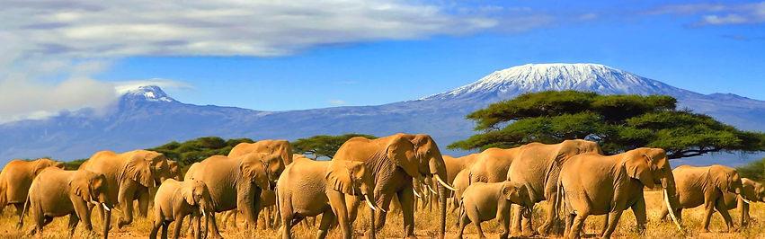 viajes-a-tanzania.jpg