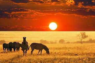África viajes mar