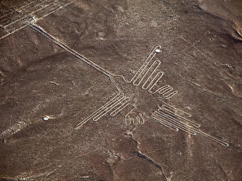 colibri-lineas-nazca