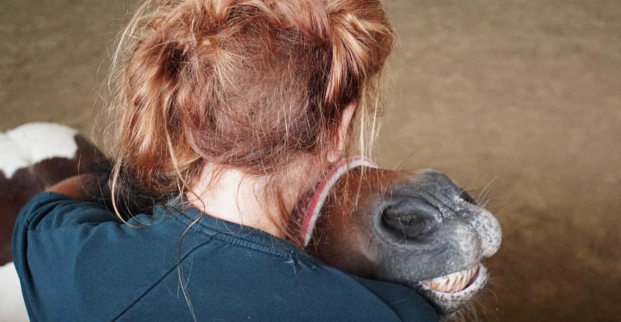 Therapie mit Pferd